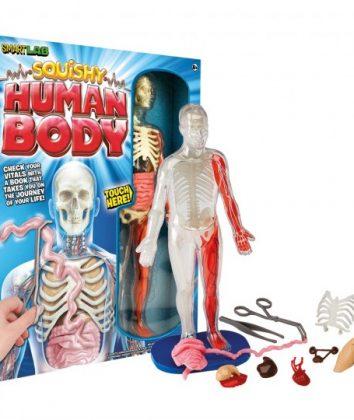 BDPS-squishy-human-body-web[1]